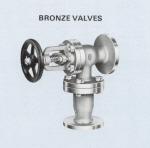 Bronze Shaw Feed Check Valves
