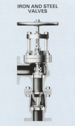 Iron & Steel Shaw Feed Check Valves