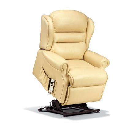 Ashford Electric Lift & Rise Care Recliner (leather)