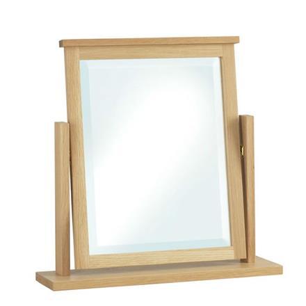Nimbus Swivel Mirror