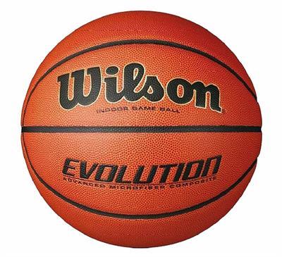 Wilson Evolution Game Ball