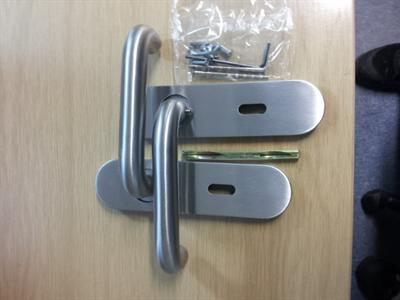 Lever handle on radiused back plate- satin stainless steel