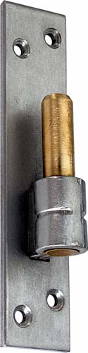 Stainless steel hinge pin Brushed Stainless Steel
