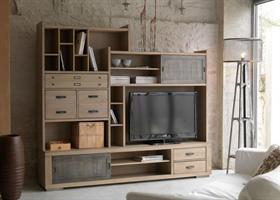 Industrial TV Combo Unit