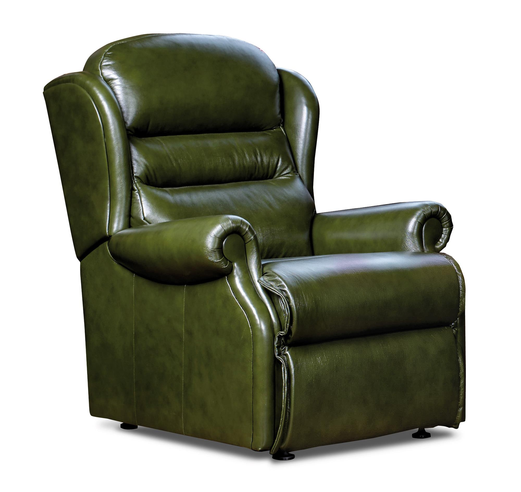 ASHFORD - Leather Fixed Chair