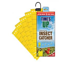 Time's Up Greenhouse Insect Catcher 5 Trap Pack