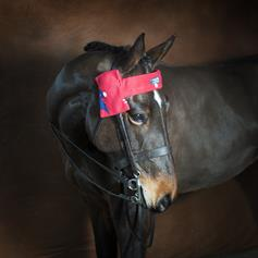 Fleece Browband Cover - Red Horse Heads