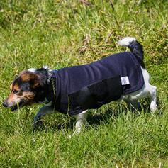 Outdoor Dog Rug